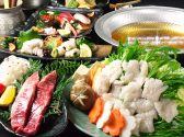 花道 海鮮料理 薩摩地鶏クチコミ・花道 海鮮料理 薩摩地鶏クーポン