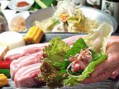 韓国料理 シンガネクチコミ・韓国料理 シンガネクーポン