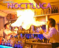 ノクティルーカ NOCTILUCA