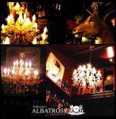 ALBATROSS Gクチコミ・ALBATROSS Gクーポン