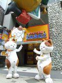 カラオケ本舗 まねきねこ 札幌南3条店 割引クーポン・カラオケ割引クーポン