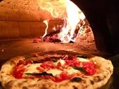 フォルノドーロ forno d'oroクチコミ・フォルノドーロ forno d'oroクーポン