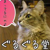 ぐるぐる堂 猫Cafeクチコミ・ぐるぐる堂 猫Cafeクーポン