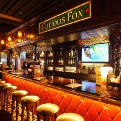 キュリアス フォックス Curious Fox