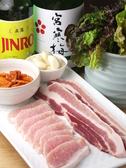 ジェイル 韓国料理クチコミ・ジェイル 韓国料理クーポン