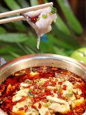四川料理 鳳家 おおとりやクチコミ・四川料理 鳳家 おおとりやクーポン